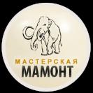 Elite Gift Workshop Mammoth